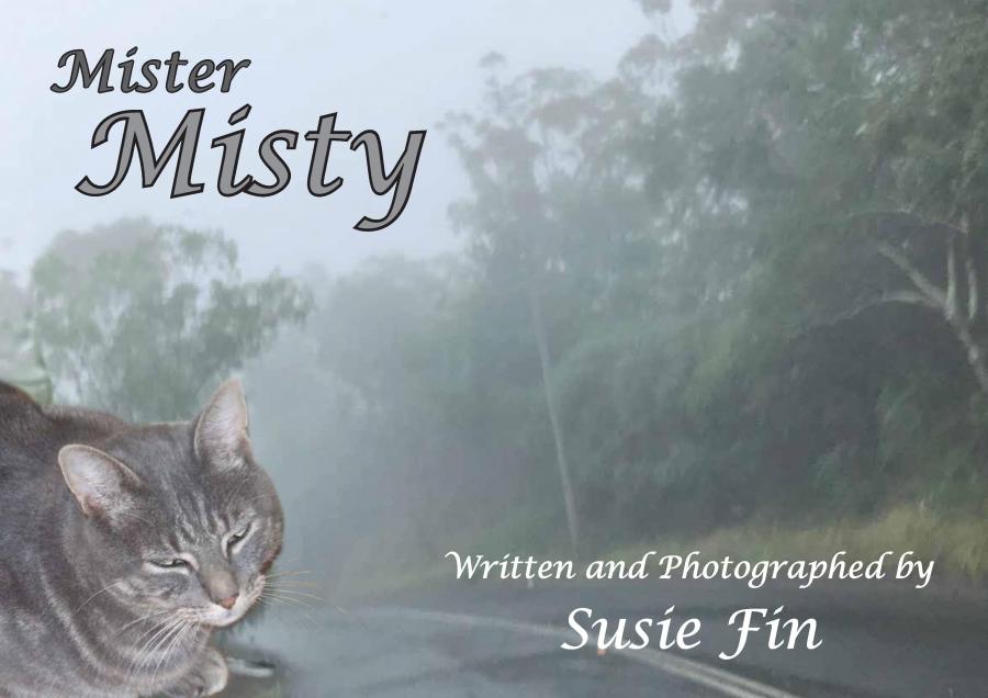 Mister Misty