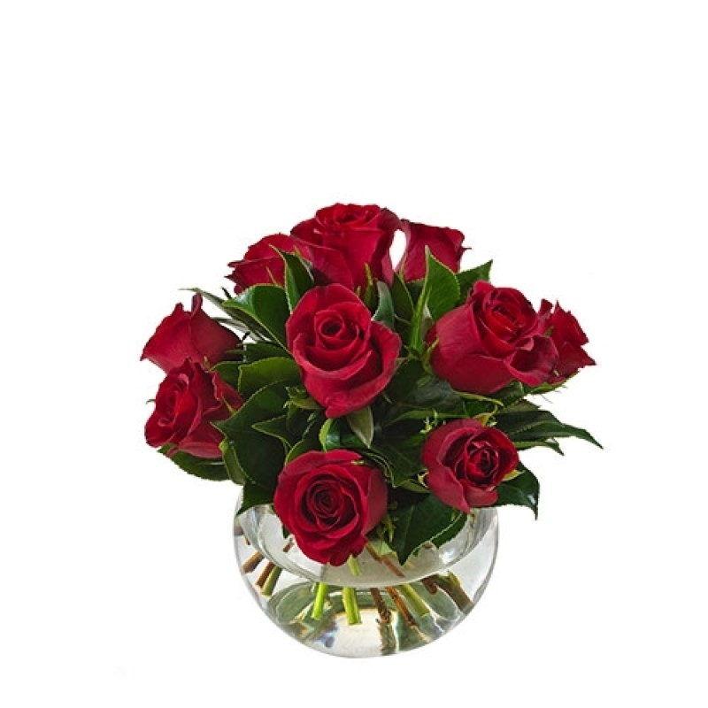 Red Roses for a Red Bandit