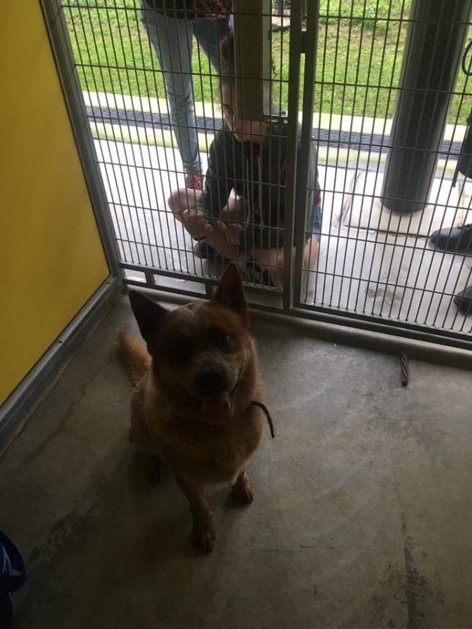 Bandit in Cell - only Family visit
