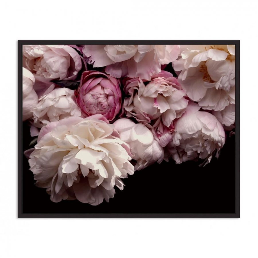 Blooming Blush Peonies