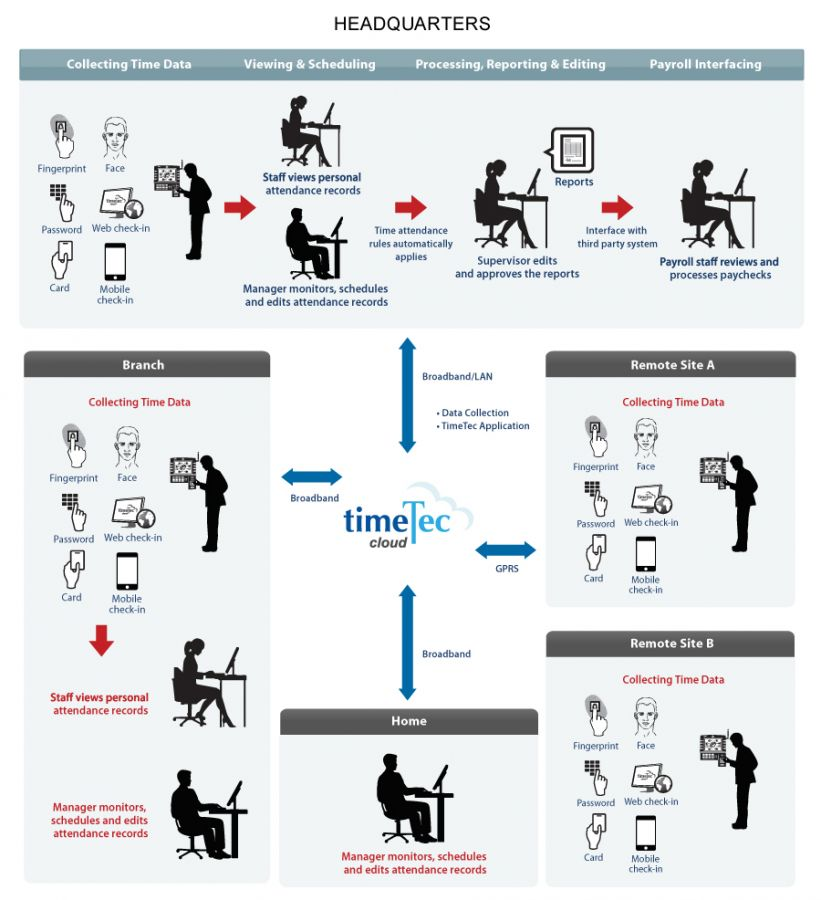 TimeTec Process